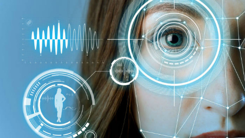 Оплата по биометрии может быть запущена до конца года